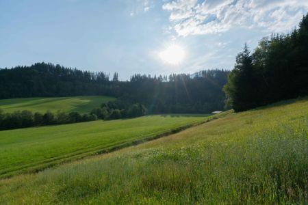 Landschaft vor dem Getznerhof