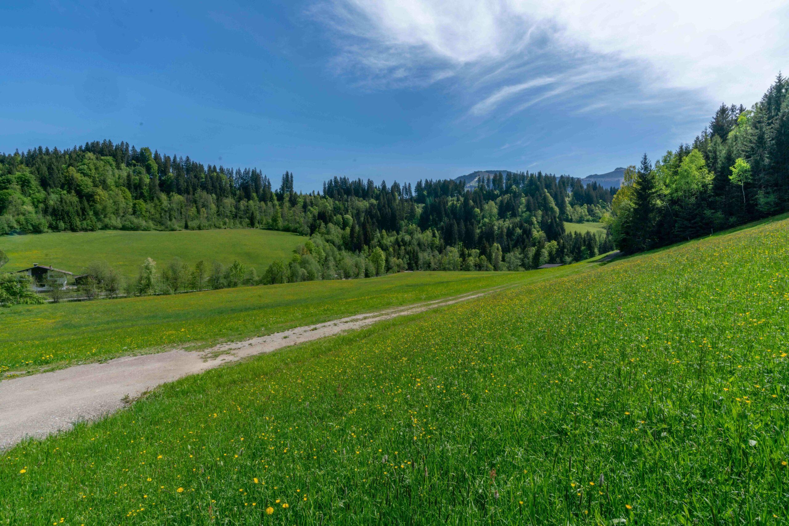 Getznerhof Blick in die Natur